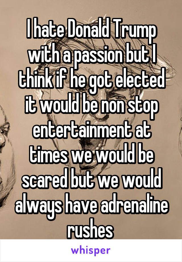 I hate Donald Trump with a passion but I think if he got elected it would be non stop entertainment at times we would be scared but we would always have adrenaline rushes