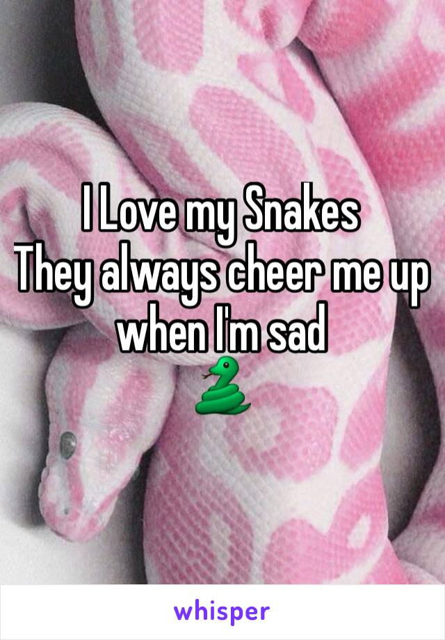 I Love my Snakes They always cheer me up when I'm sad  🐍