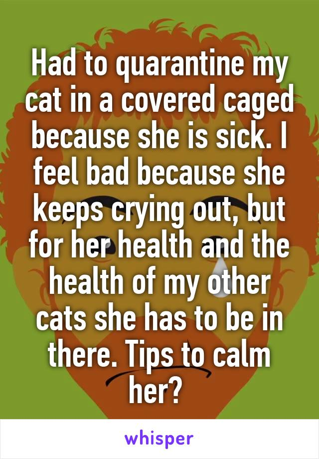 Had to quarantine my cat in a covered caged because she is sick. I feel bad because she keeps crying out, but for her health and the health of my other cats she has to be in there. Tips to calm her?