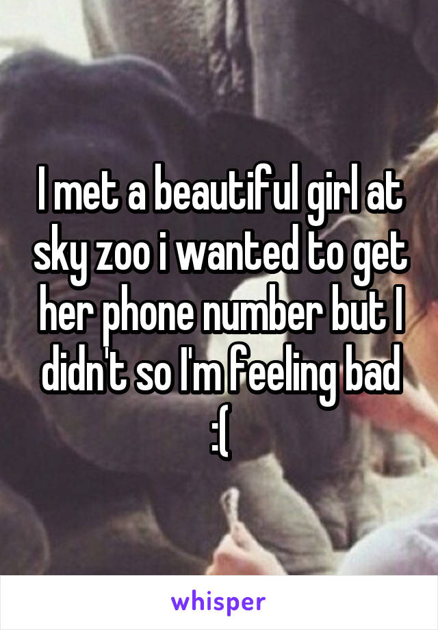I met a beautiful girl at sky zoo i wanted to get her phone number but I didn't so I'm feeling bad :(
