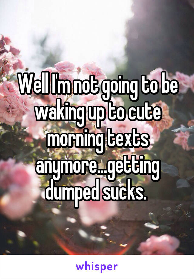Well I'm not going to be waking up to cute morning texts anymore...getting dumped sucks.