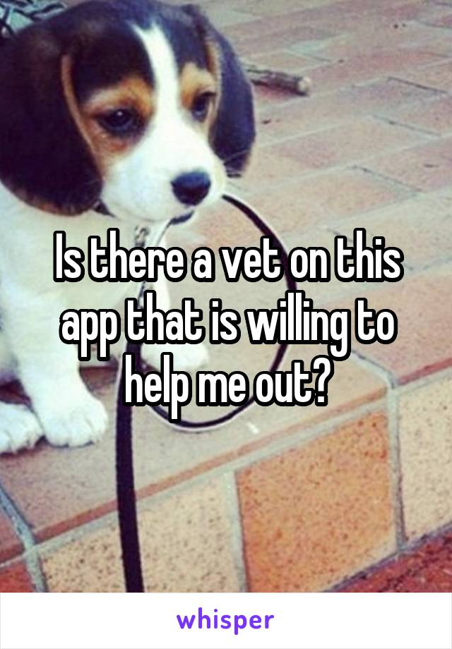 Is there a vet on this app that is willing to help me out?