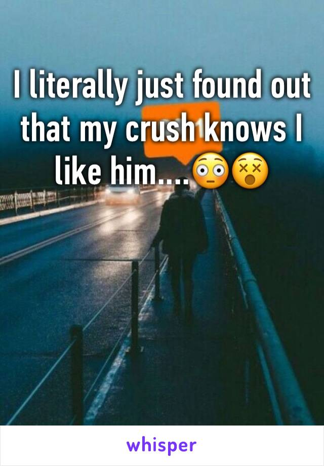 I literally just found out that my crush knows I like him....😳😵