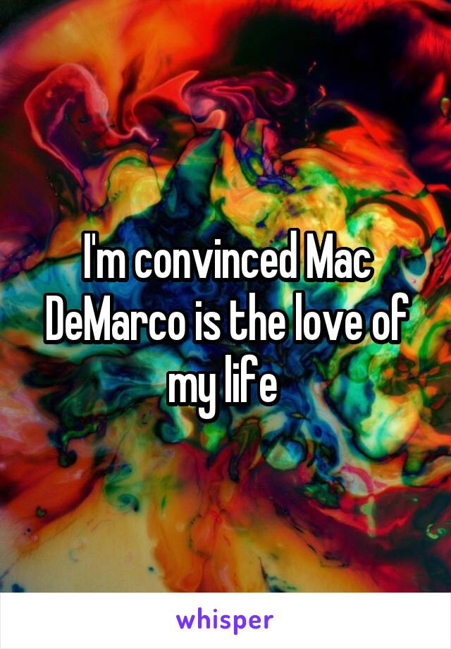I'm convinced Mac DeMarco is the love of my life