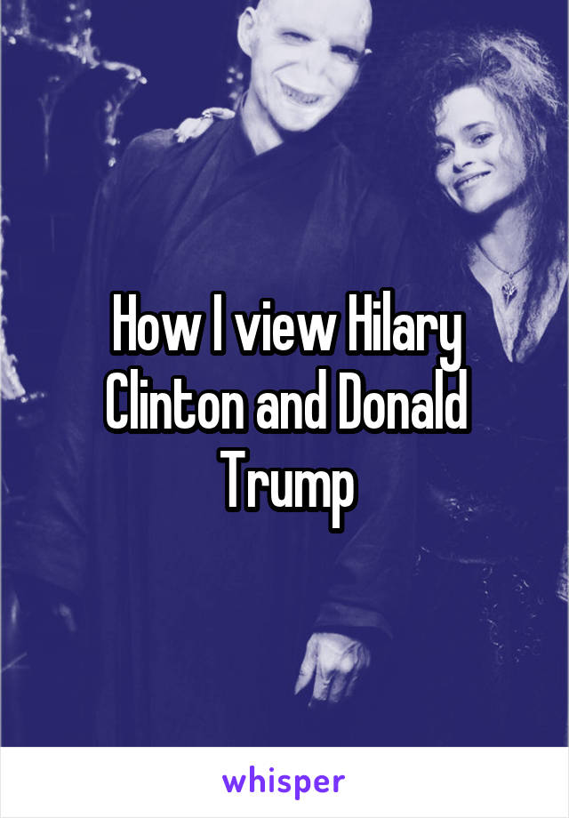 How I view Hilary Clinton and Donald Trump