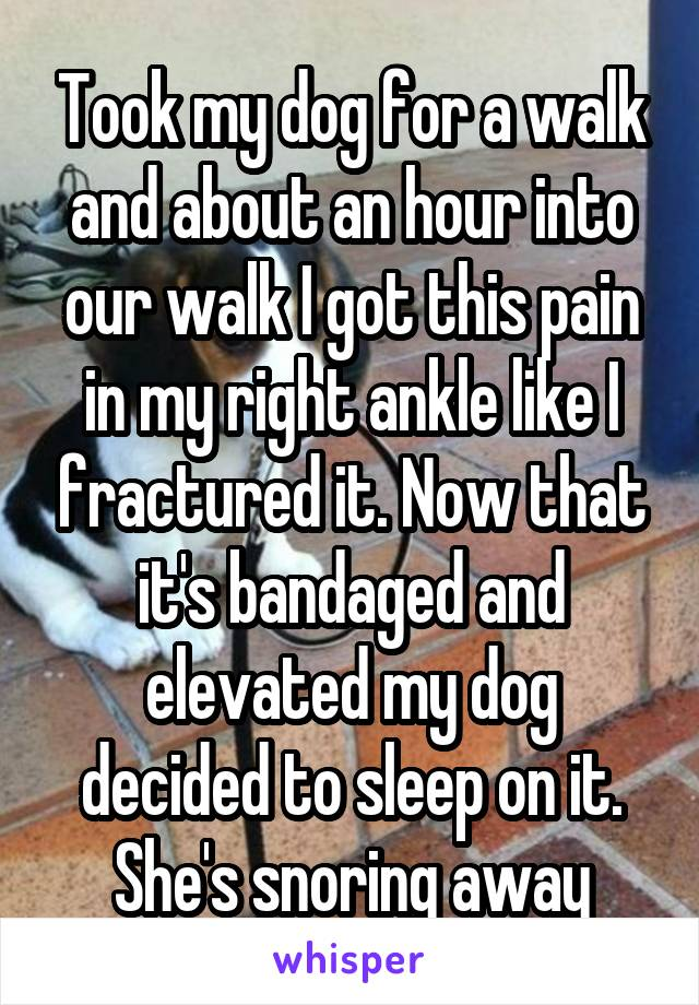 Took my dog for a walk and about an hour into our walk I got this pain in my right ankle like I fractured it. Now that it's bandaged and elevated my dog decided to sleep on it. She's snoring away
