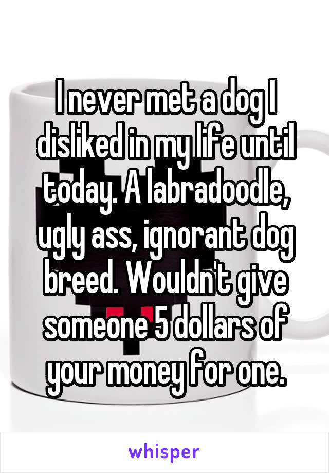 I never met a dog I disliked in my life until today. A labradoodle, ugly ass, ignorant dog breed. Wouldn't give someone 5 dollars of your money for one.