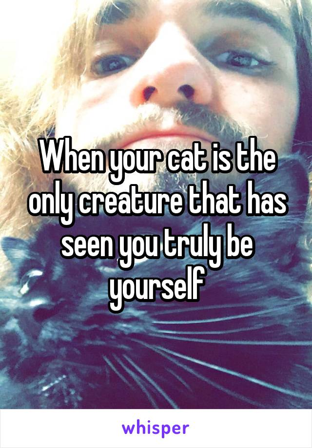When your cat is the only creature that has seen you truly be yourself