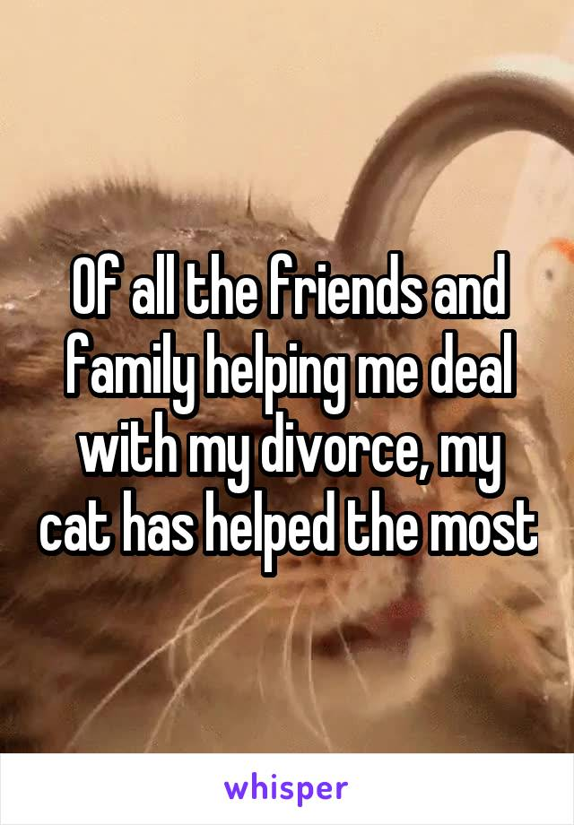 Of all the friends and family helping me deal with my divorce, my cat has helped the most