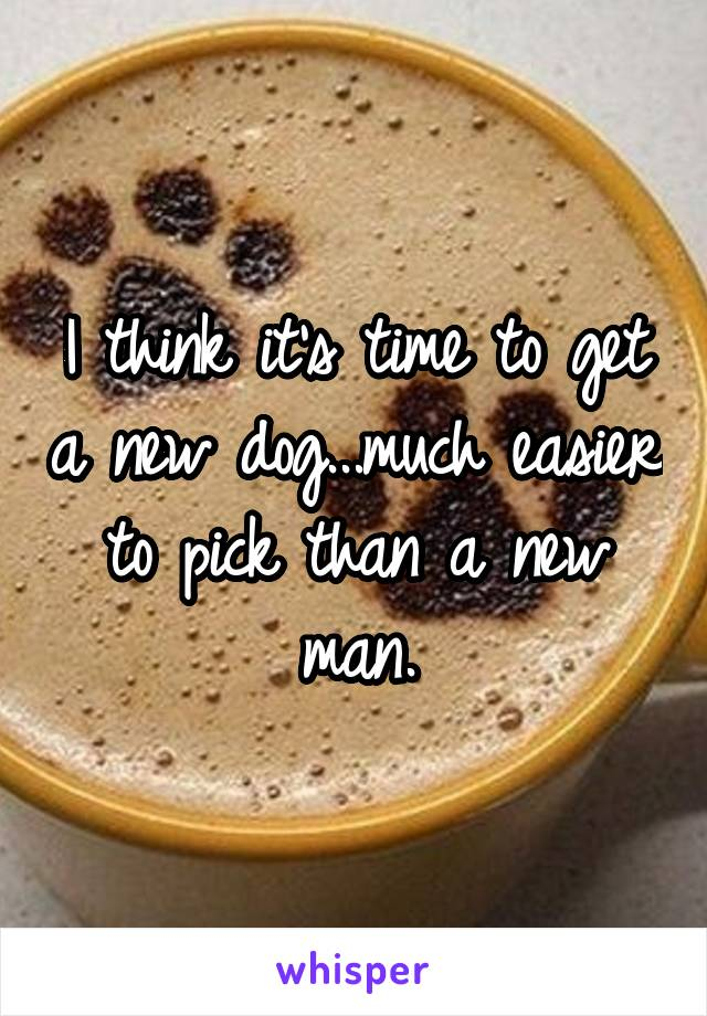 I think it's time to get a new dog...much easier to pick than a new man.