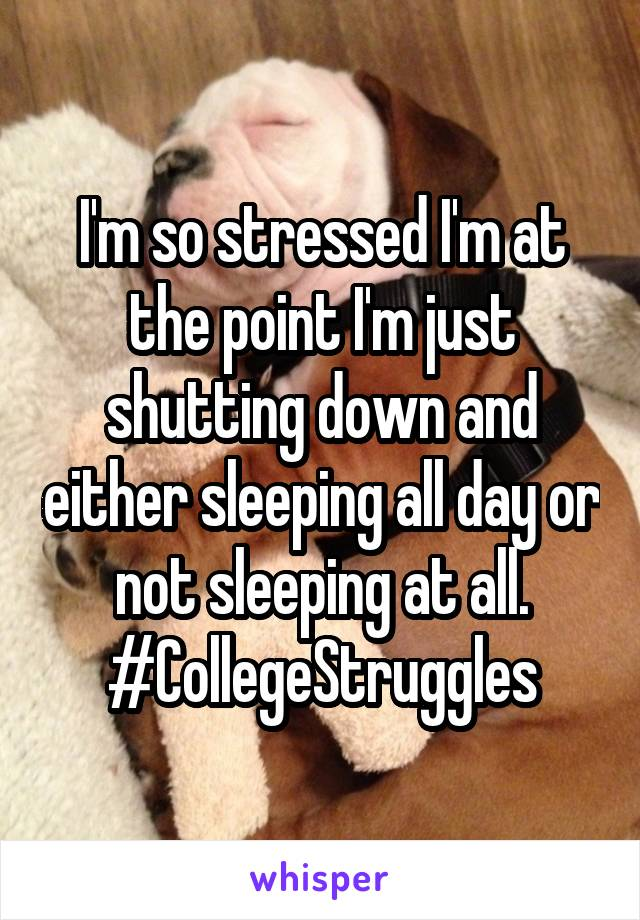 I'm so stressed I'm at the point I'm just shutting down and either sleeping all day or not sleeping at all. #CollegeStruggles