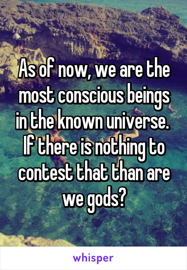 As of now, we are the most conscious beings in the known universe.  If there is nothing to contest that than are we gods?