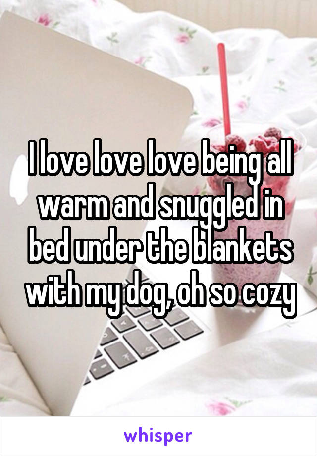 I love love love being all warm and snuggled in bed under the blankets with my dog, oh so cozy