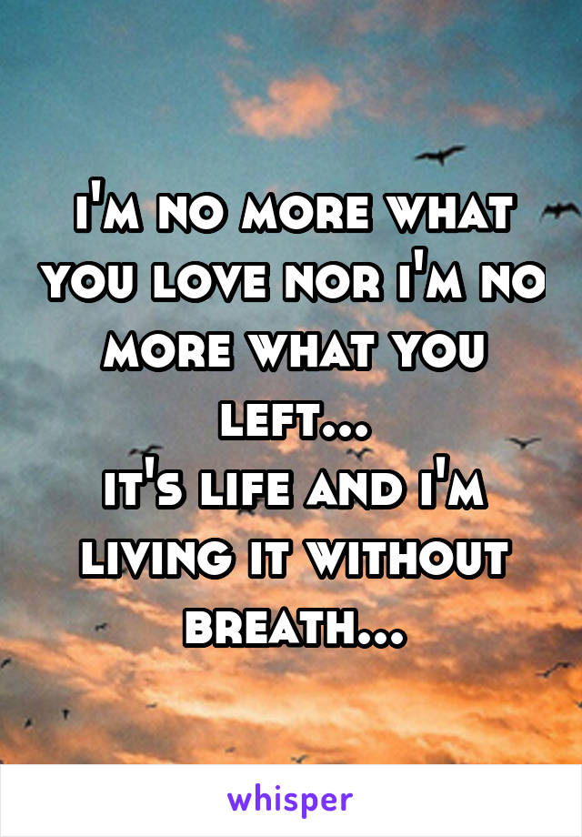 i'm no more what you love nor i'm no more what you left... it's life and i'm living it without breath...