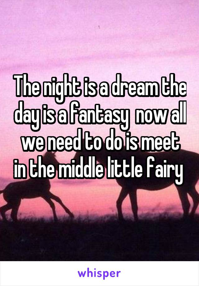The night is a dream the day is a fantasy  now all we need to do is meet in the middle little fairy
