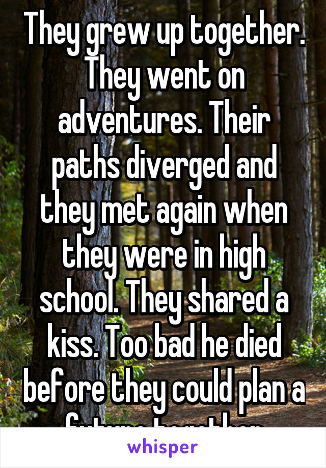 They grew up together. They went on adventures. Their paths diverged and they met again when they were in high school. They shared a kiss. Too bad he died before they could plan a future together