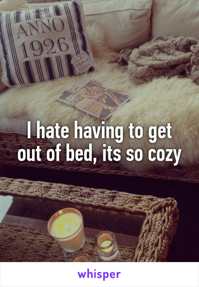I hate having to get out of bed, its so cozy