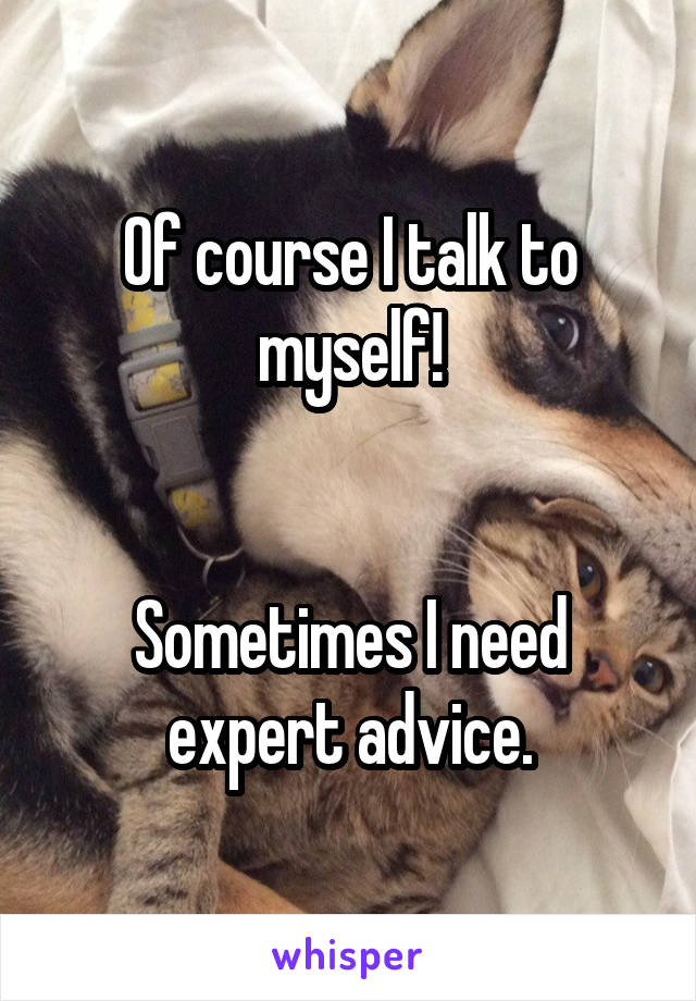 Of course I talk to myself!   Sometimes I need expert advice.