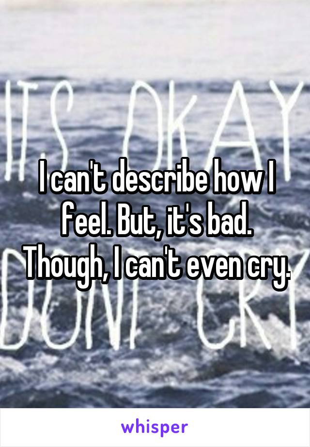 I can't describe how I feel. But, it's bad. Though, I can't even cry.