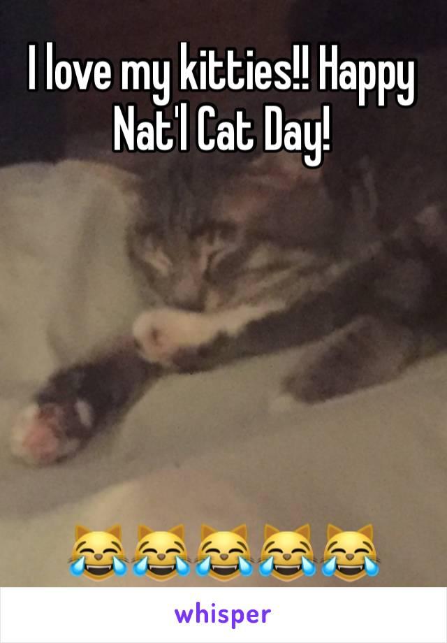 I love my kitties!! Happy Nat'l Cat Day!        😹😹😹😹😹