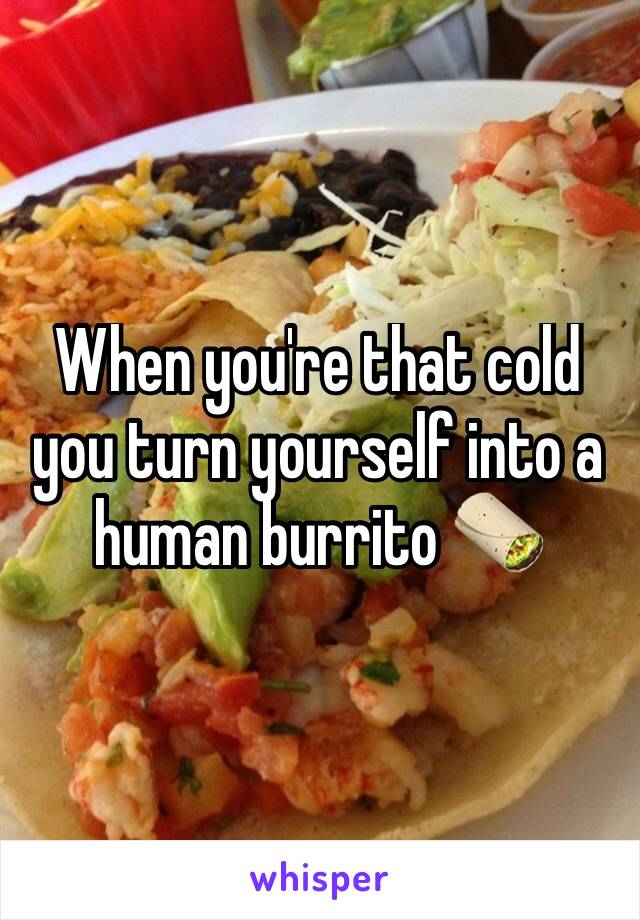 When you're that cold you turn yourself into a human burrito 🌯