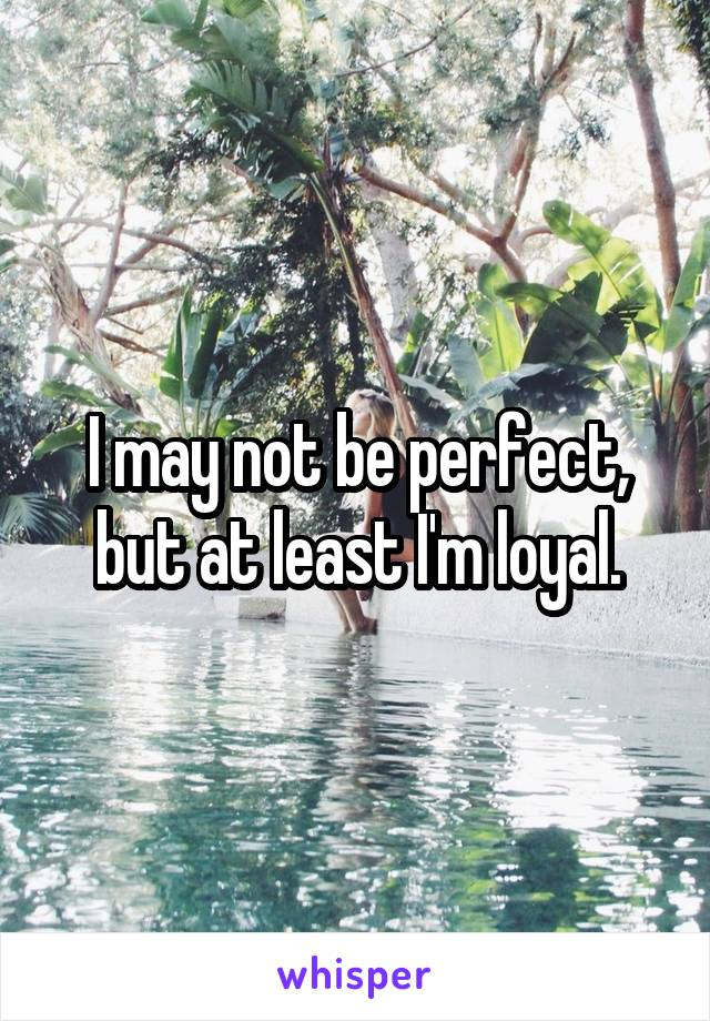 I may not be perfect, but at least I'm loyal.