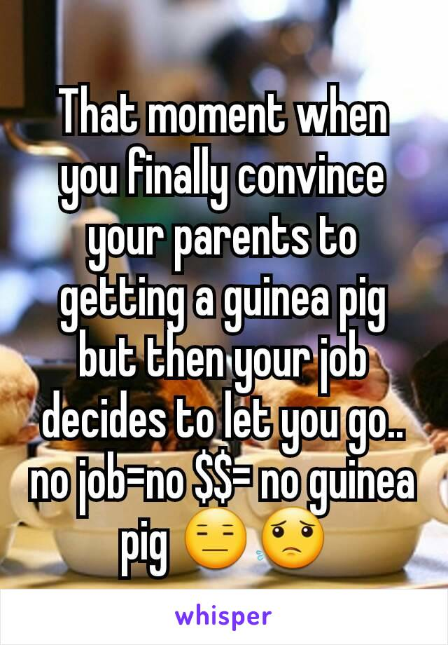 That moment when you finally convince your parents to getting a guinea pig but then your job decides to let you go.. no job=no $$= no guinea pig 😑😟