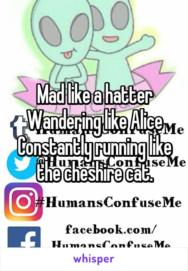 Mad like a hatter Wandering like Alice Constantly running like the cheshire cat.