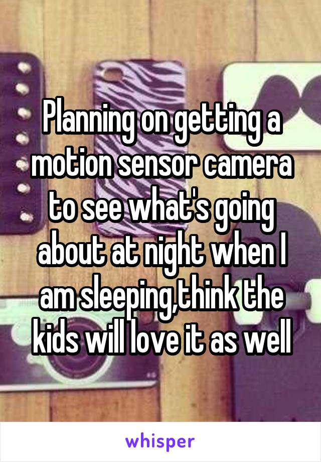 Planning on getting a motion sensor camera to see what's going about at night when I am sleeping,think the kids will love it as well