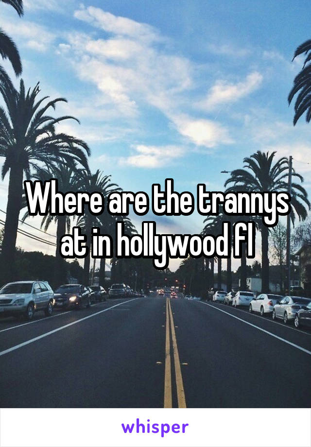 Where are the trannys at in hollywood fl
