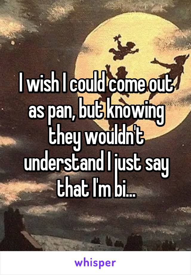 I wish I could come out as pan, but knowing they wouldn't understand I just say that I'm bi...