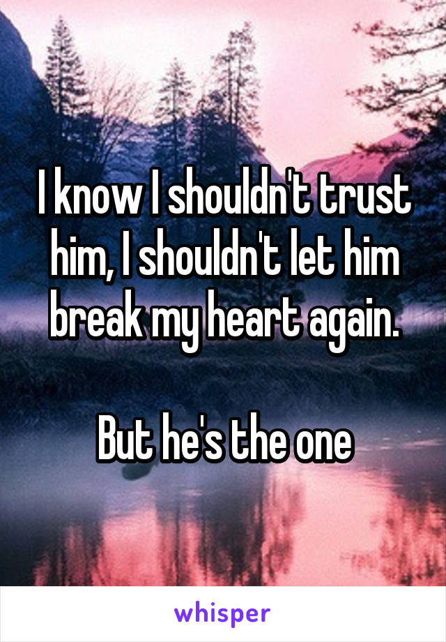 I know I shouldn't trust him, I shouldn't let him break my heart again.  But he's the one