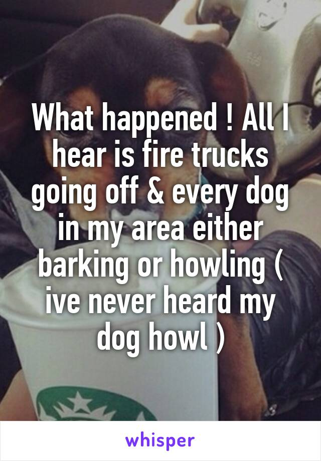 What happened ! All I hear is fire trucks going off & every dog in my area either barking or howling ( ive never heard my dog howl )