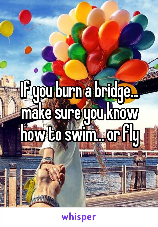 If you burn a bridge... make sure you know how to swim... or fly