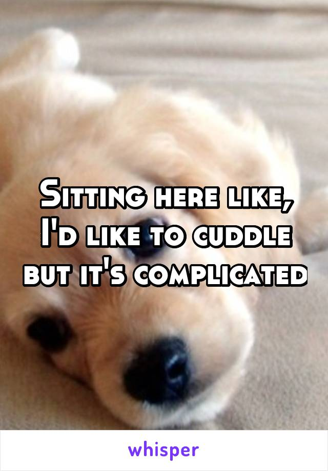 Sitting here like, I'd like to cuddle but it's complicated