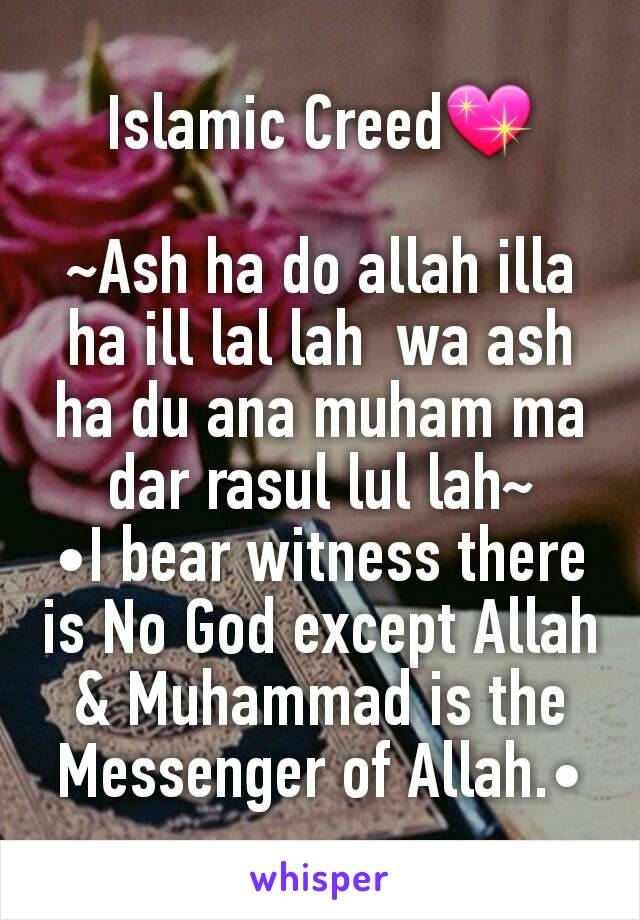 Islamic Creed💖  ~Ash ha do allah illa ha ill lal lah  wa ash ha du ana muham ma dar rasul lul lah~ •I bear witness there is No God except Allah & Muhammad is the Messenger of Allah.•