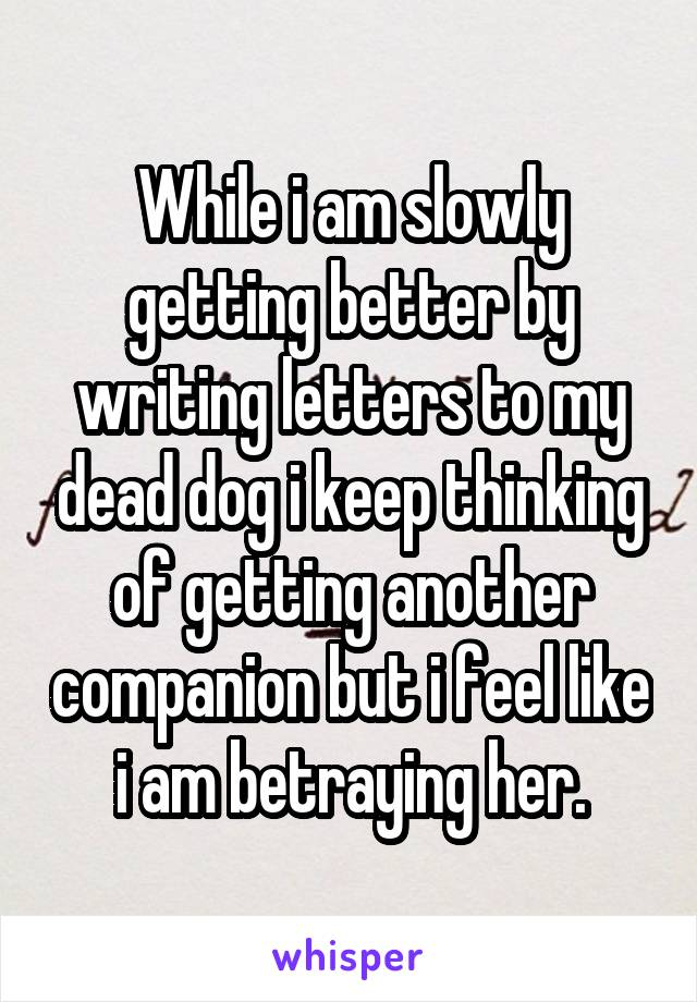 While i am slowly getting better by writing letters to my dead dog i keep thinking of getting another companion but i feel like i am betraying her.