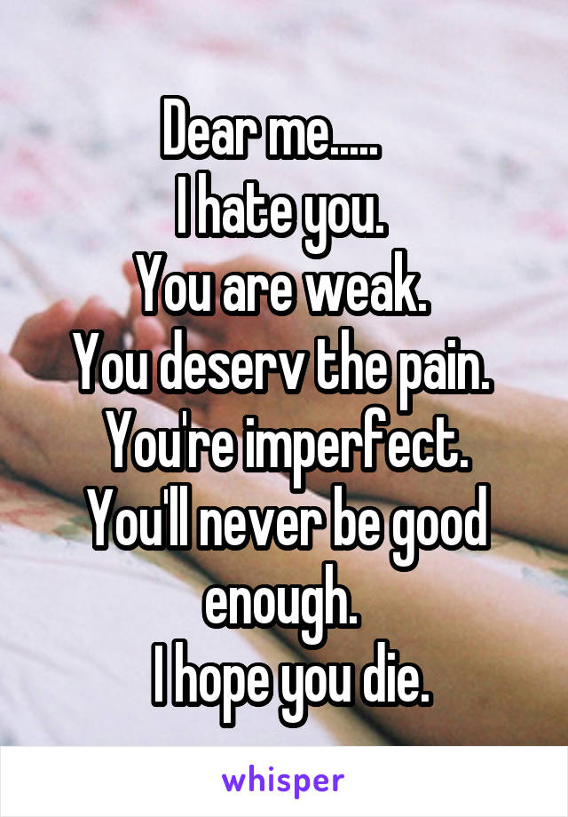 Dear me.....    I hate you.  You are weak.  You deserv the pain.  You're imperfect. You'll never be good enough.   I hope you die.