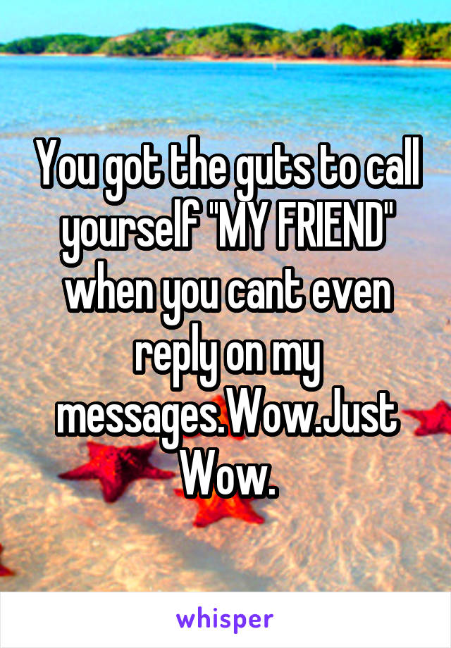 You got the guts to call yourself ''MY FRIEND'' when you cant even reply on my messages.Wow.Just Wow.