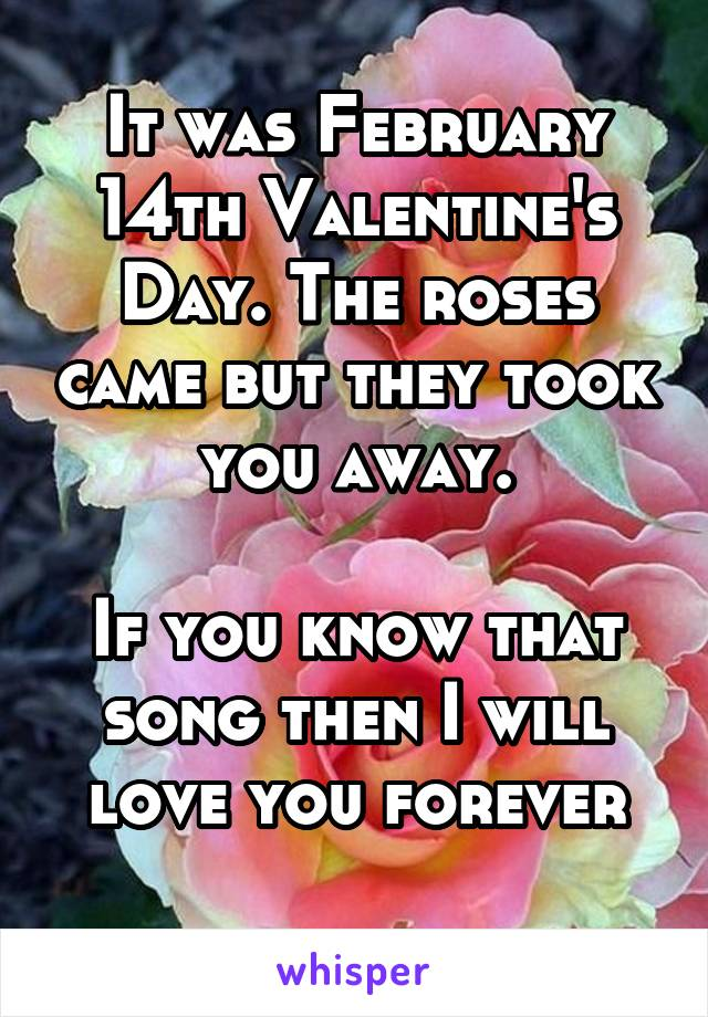 It was February 14th Valentine's Day. The roses came but they took you away.  If you know that song then I will love you forever