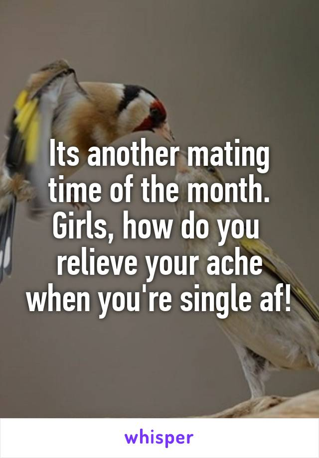Its another mating time of the month. Girls, how do you  relieve your ache when you're single af!