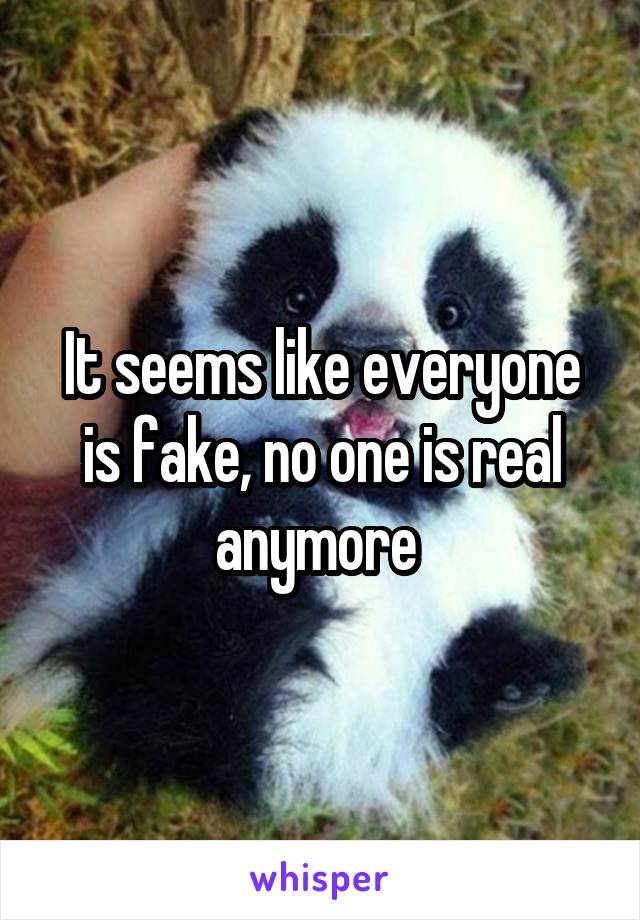 It seems like everyone is fake, no one is real anymore