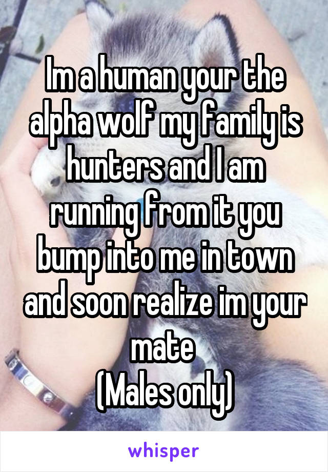 Im a human your the alpha wolf my family is hunters and I am running from it you bump into me in town and soon realize im your mate  (Males only)