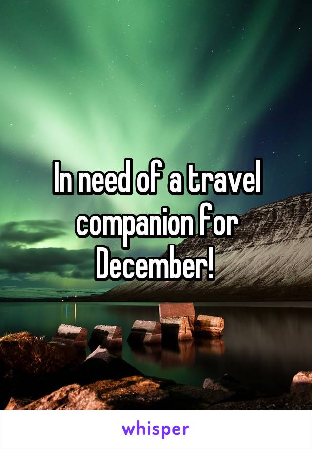 In need of a travel companion for December!