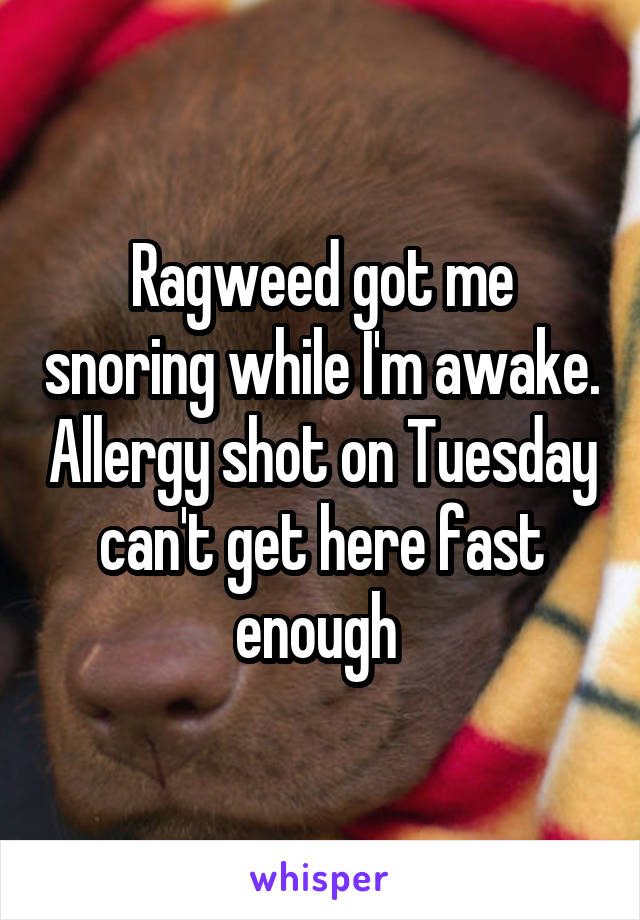 Ragweed got me snoring while I'm awake. Allergy shot on Tuesday can't get here fast enough