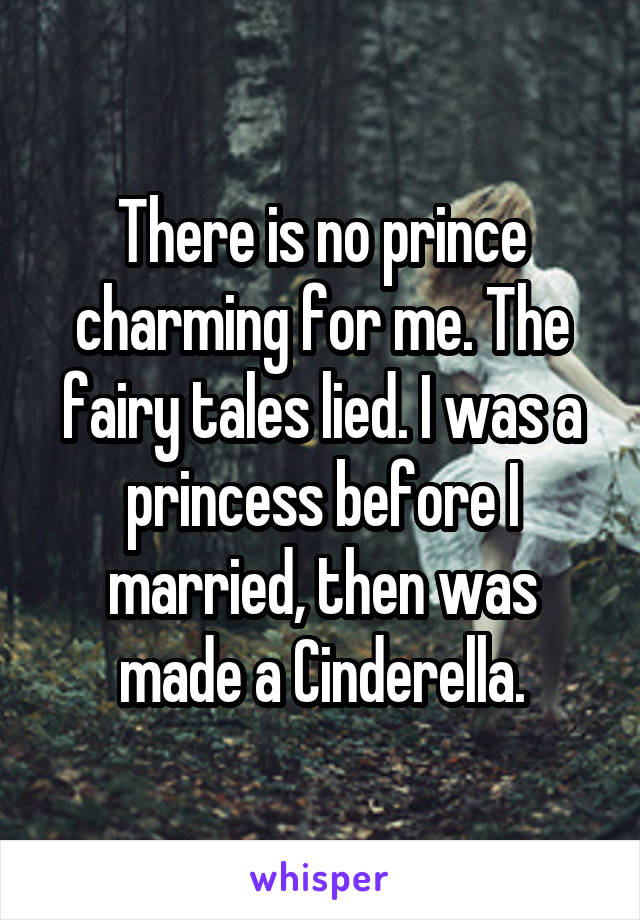 There is no prince charming for me. The fairy tales lied. I was a princess before I married, then was made a Cinderella.