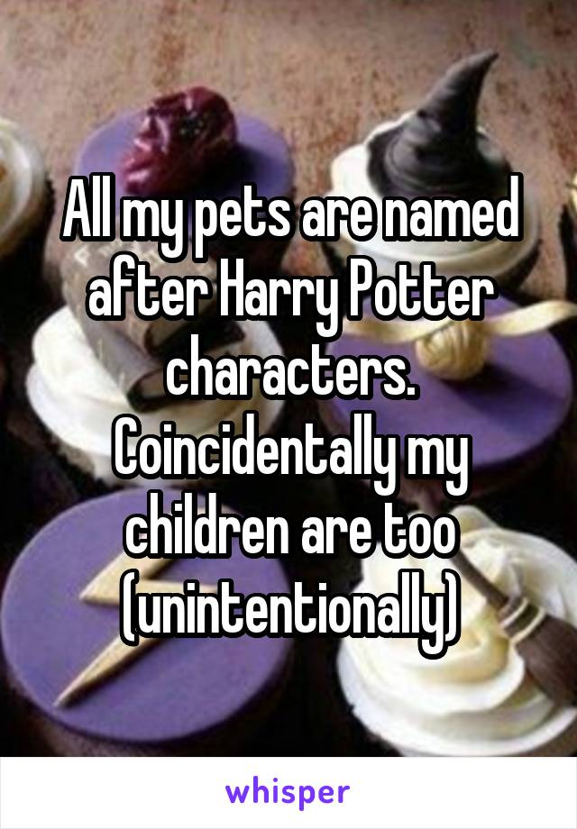 All my pets are named after Harry Potter characters. Coincidentally my children are too (unintentionally)