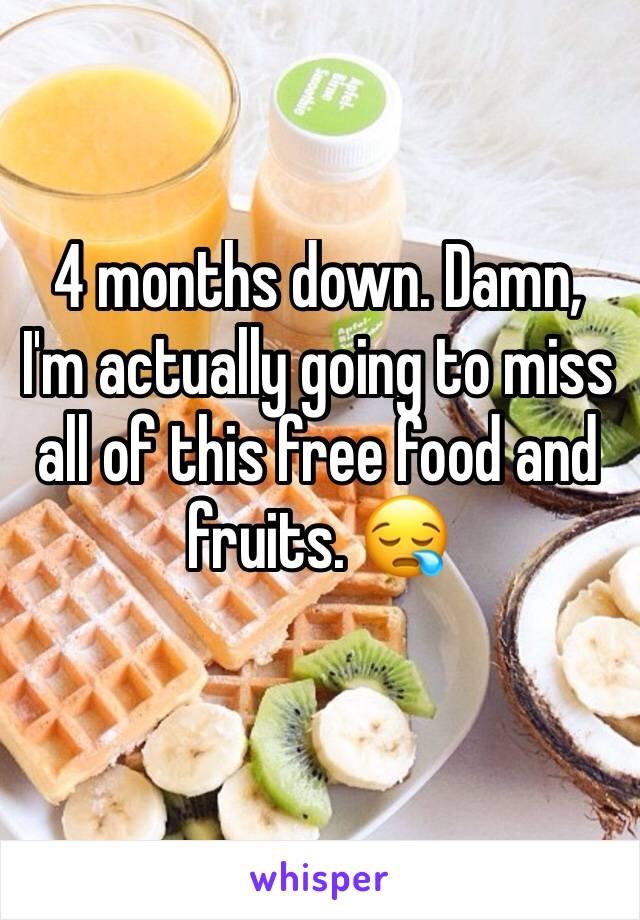 4 months down. Damn, I'm actually going to miss all of this free food and fruits. 😪
