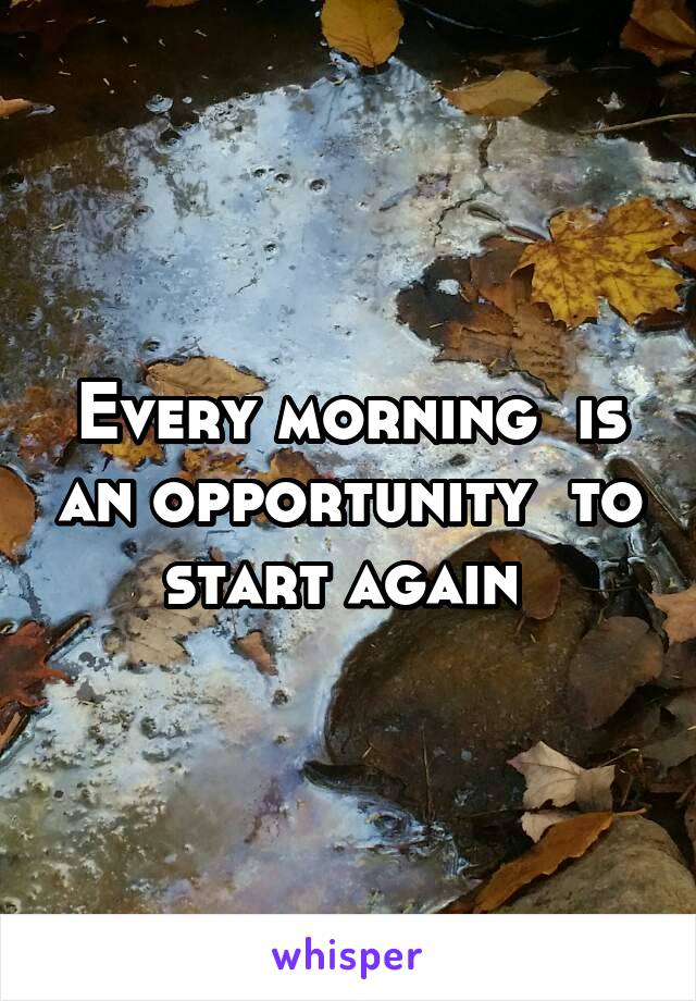 Every morning  is an opportunity  to start again