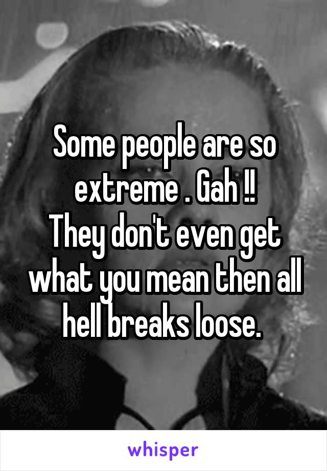 Some people are so extreme . Gah !! They don't even get what you mean then all hell breaks loose.